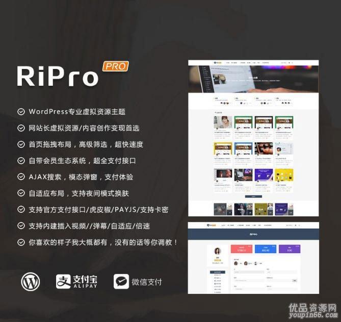 RiPro主题Ripro5.6.0 无限制版源码